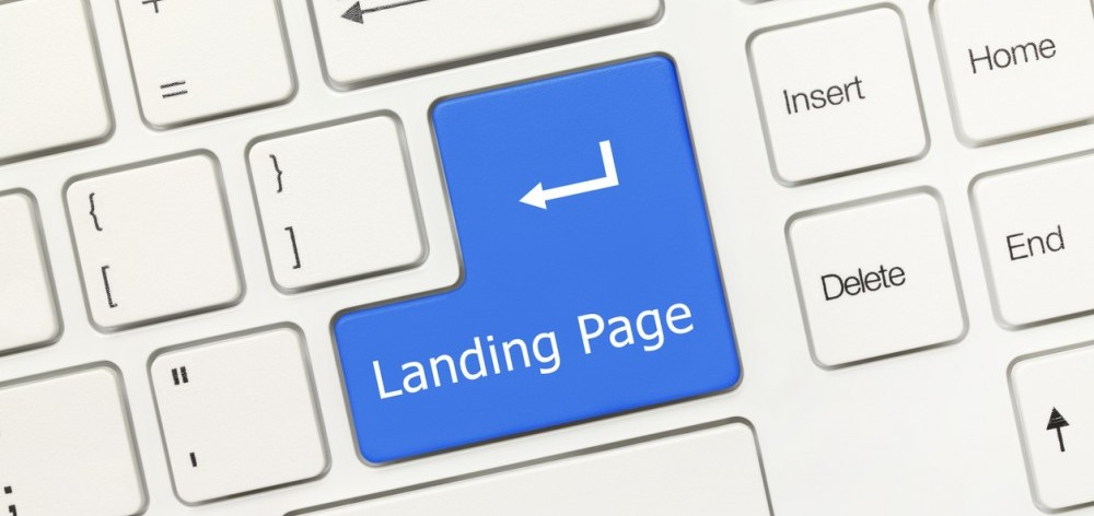 What's in a landing page?