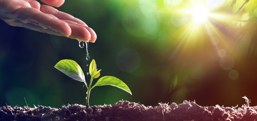 Preparing your small business for rapid growth