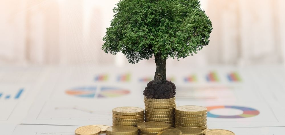 Ethical Investing: Is It For You?